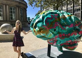 Mind the brain – art exposition in Luxembourg